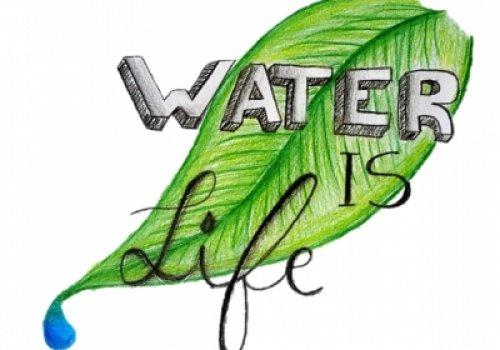 """Tarptautinis projekto """"Vanduo yra gyvenimas""""…"""