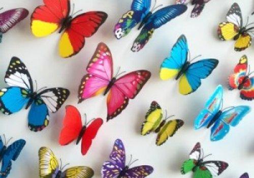 """,,Jausmų drugeliai"""""""